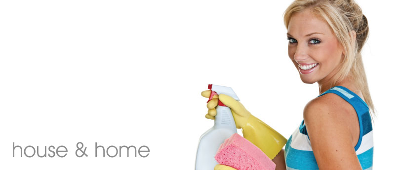 House and home cleaning products banner